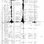 copernicus1862-3