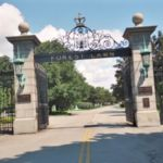 forest_lawn_01